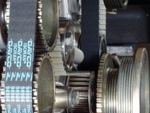 s-DSC05454